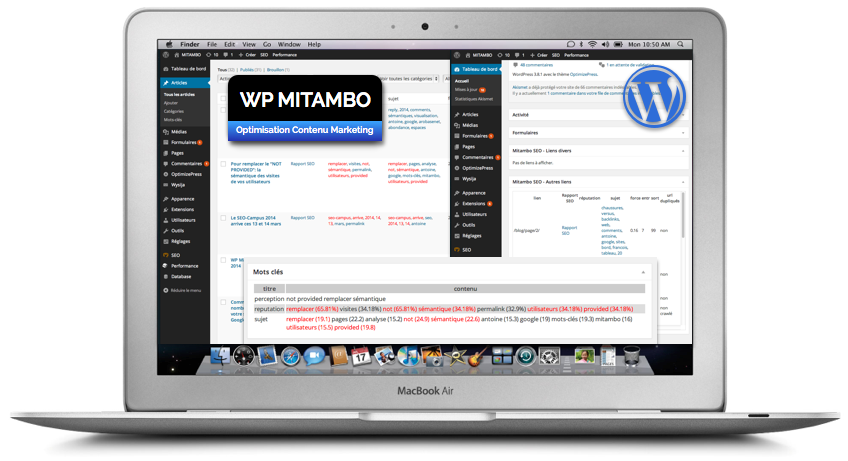 WP mitambo (plugin wordpress)